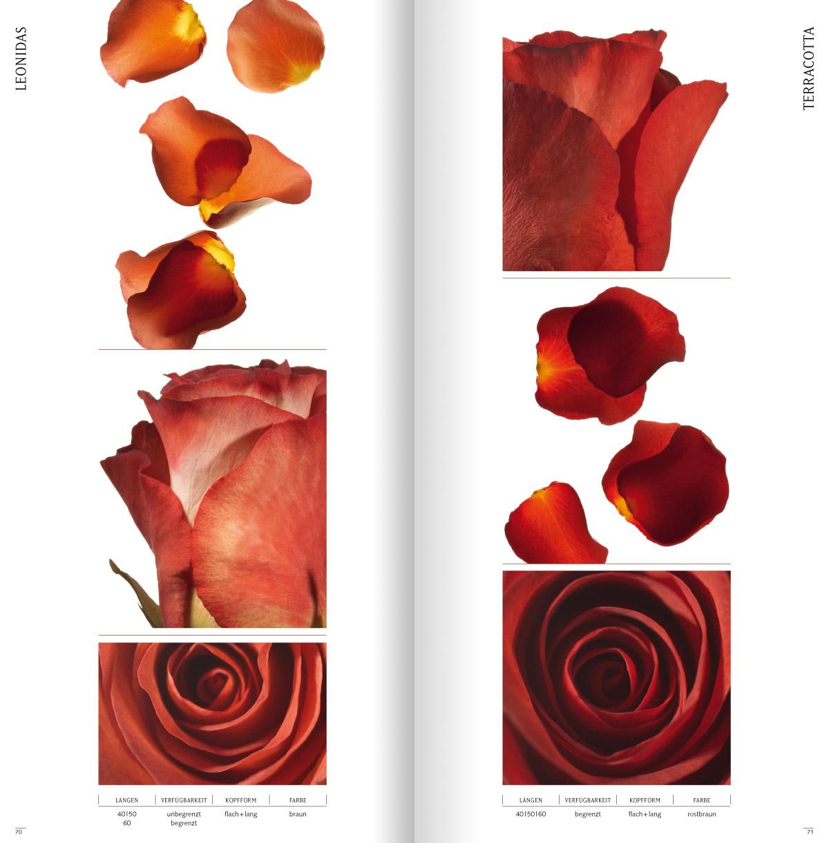 rosen5